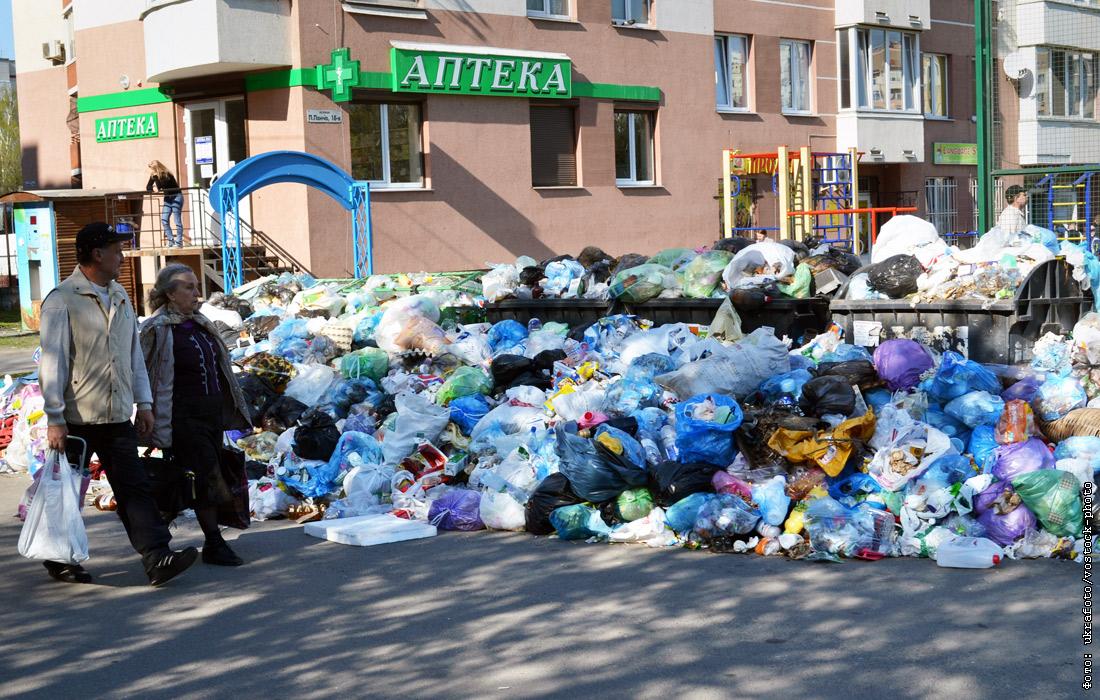 Фото львова утопающего в мусоре
