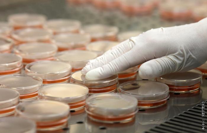 Американские лаборатории допустили несколько утечек опасных бактерий