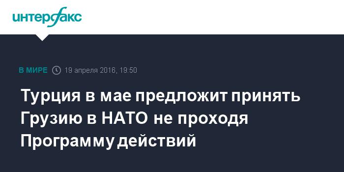 Турция в мае предложит принять Грузию в НАТО не проходя Программу действий