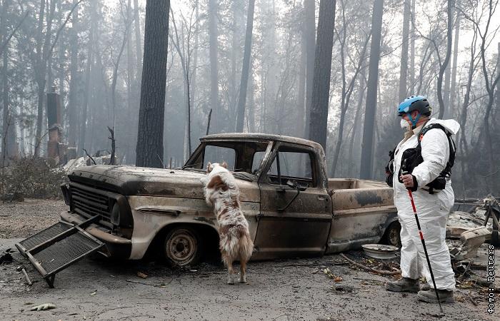 Число жертв пожаров в Калифорнии превысило 60 человек