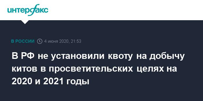 В РФ не установили квоту на добычу китов в просветительских целях на 2020 и 2021 годы