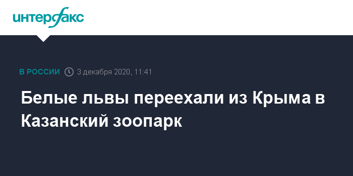 3 декабря 2020 г. 11:33 Белые львы переехали в Казанский зоопарк из Крыма