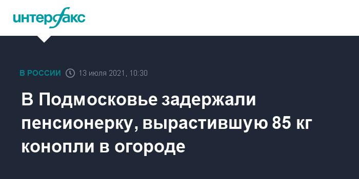 777639 В Подмосковье задержали пенсионерку, вырастившую 85 кг конопли в огороде