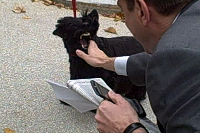 Собака Джорджа Буша укусила репортера Reuters