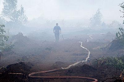 В России продолжает гореть более 170 очагов природных пожаров