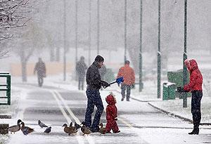 Онищенко отрицает техногенный снег