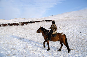 Алтайские фермеры против Роскосмоса