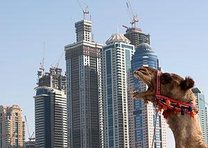 Страсти по Дубаю улеглись