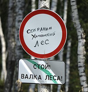 Химкинский лес: от вырубки к обсуждению