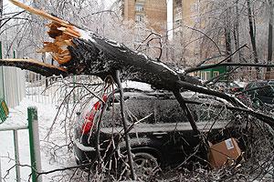 Ледяной дождь прошел над страховщиками