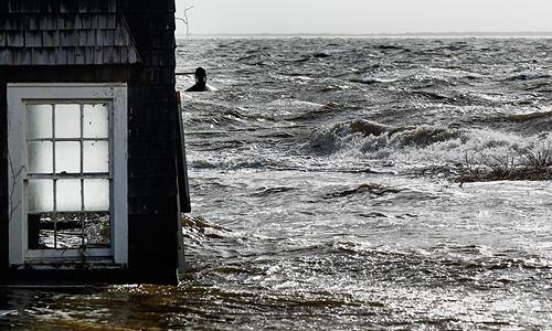 """Жертвами урагана """"Сэнди"""" стали как минимум 43 человека, 8 млн человек остались без электричества."""