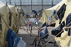 Мигрантов из Гольяново хотят переселить
