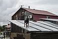Собака на крыше затопленного дома в поселке Уссурийский.