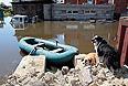 Восстановление дорог после наводнения на Дальнем Восток оценили в 2 млрд рублей.