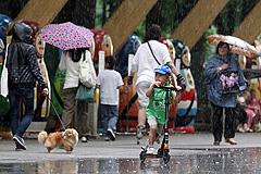 В Москве будут идти дожди