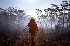 Австралия горит из-за беспечности военных