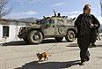 Женщина с собачкой. На заднем плане бронеавтомобиль.
