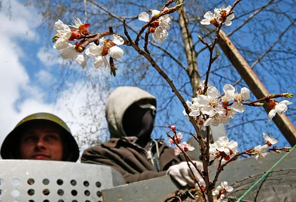 Пророссийские активисты на баррикадах в Славянске.