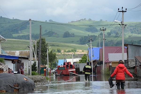 Сотрудники МЧС в селе Майма откачивают воду, оставшуюся в низинах после понижения уровня воды в реке Катуни.