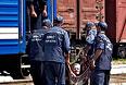 Сотрудники МЧС Украины помогают поднять пожилую женщину в вагон.