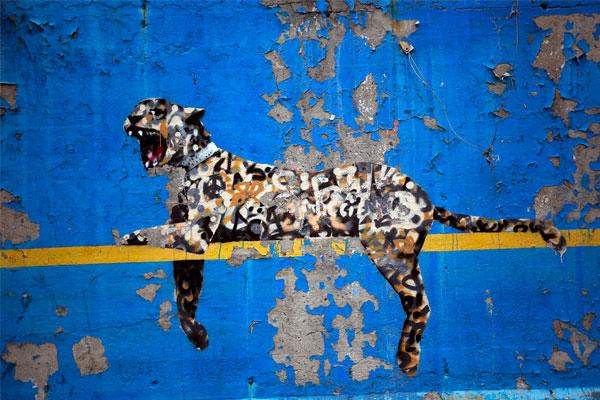 """""""Зоопарк Бронкса"""", Нью-Йорк."""