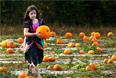 Девятилетняя девочка несет тыкву во время празднования Хэллоуина в южной Англии.