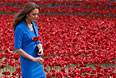"""В начале августа один из красных маков рядом с Тауэром """"высадила"""" супруга принца Уильяма, герцогиня Кембриджская Кейт Миддлтон."""