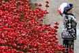 В этом году в разных странах мира прошли мероприятия, посвященные столетию начала Первой мировой войны. В вооруженном конфликте, который длился с 1914 по 1918 год, участвовали более 60 государств. Страны-участницы потеряли более 10 млн солдат. Кроме того, были убиты около 12 млн мирных жителей.