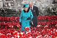 Королева Великобритании и Северной Ирландии Елизавета II и ее супруг принц Филипп прогулялись среди красных маков в середине октября.