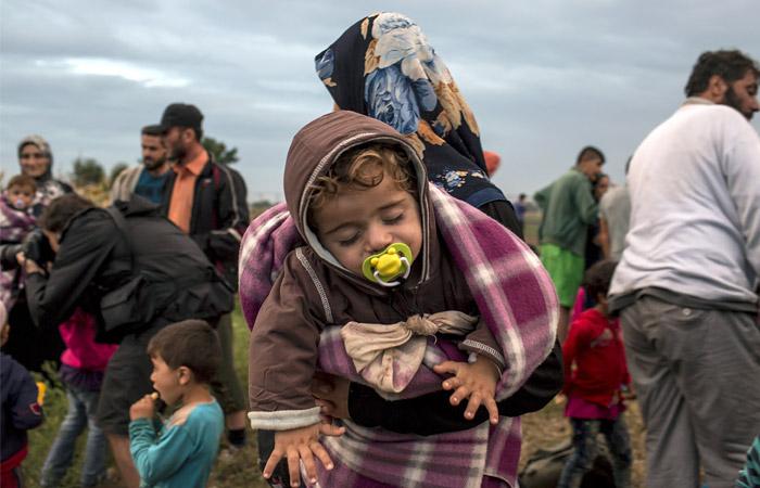 Сирийские беженцы около населенного пункта Реске на юге Венгрии, у границы с Сербией