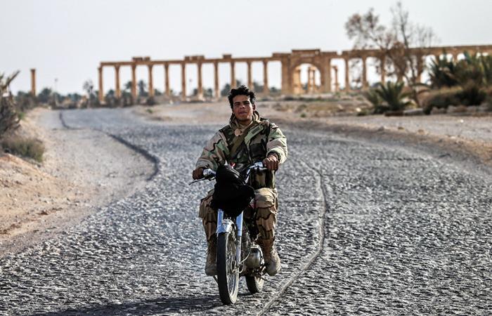 """Боец подразделения """"Соколы Пустыни"""" осматривает старый город"""