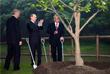 Президент Узбекистана Ислам Каримов, президент России Владимир Путин и президент Казахстана Нурсултан Назарбаев (слева направо) принимают участие в церемонии посадки дерева в честь юбилейного пятого саммита Шанхайской организации сотрудничества. 2006 год.
