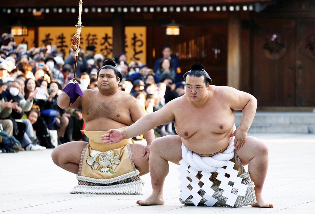 птичниках, картинки сумо каратэ маникюр серебристыми