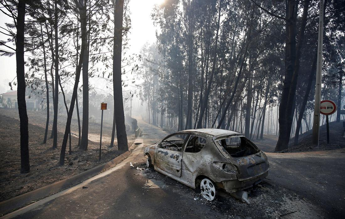 Тела 17 погибших были найдены рядом с автомобилями, по-видимому, люди пытались убежать из огненной ловушки, поняв, что проехать им не удастся
