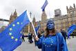 В Лондоне собрались протестующие против выхода Великобритании из ЕС