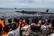 Департамент охраны природы организовал спасательную операцию, к которой присоединились местные жители