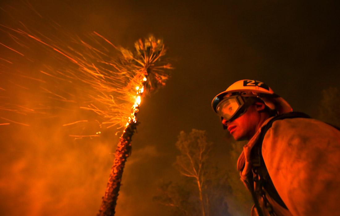 Площадь пострадавшей от пожаров территории составила уже почти 50 тыс. га