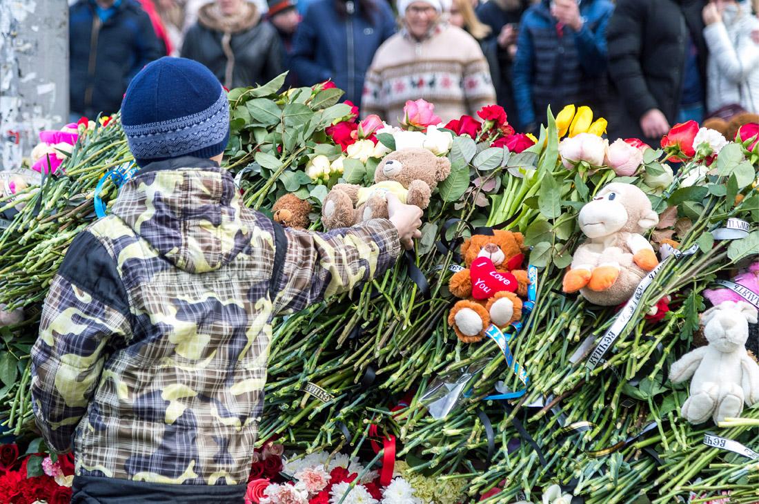 Цветы и мягкие игрушки, принесенные жителями города к месту трагедии