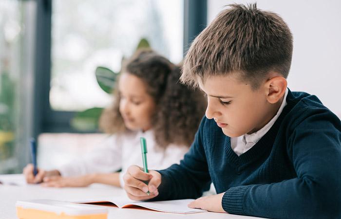 Эксперты ВШЭ, СПбГУ и МГПУ раскритиковали новые образовательные стандарты для школы