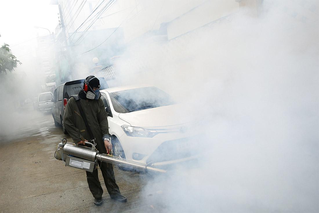 В рамках борьбы с лихорадкой Денге в Таиланде массово травят комаров