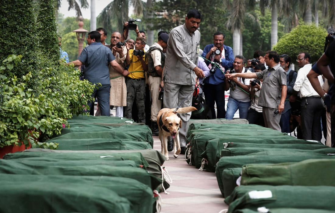 Парламент Индии утвердил государственный бюджет на 2019 и 2020 год. На фото: служебная собака проверяет сумки, в которых находятся копии документов, которые будут распространены среди законодателей.
