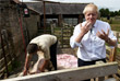 Кандидат в лидеры Консервативной партии после стрижки овец на ферме Ностерфилд, Северный Йоркшир. Июль 2019 года.