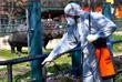 Число заболевших коронавирусом в Северной Македонии достигло 23 человек, правительство ужесточает меры по предотвращению распространения инфекции