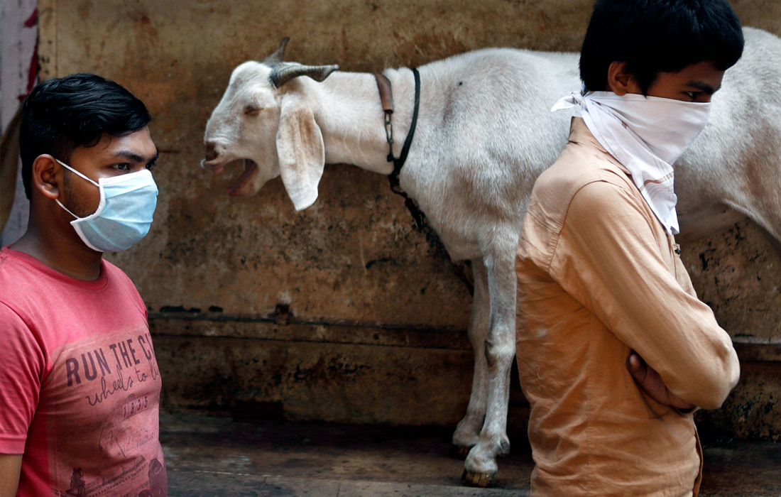 В Индии продолжается общенациональный карантин. Людям запрещено выходить из домов, введен комендантский час. Число заразившихся коронавирусом выросло на 240 человек за одни сутки. Общее число больных составило 1637 человек.