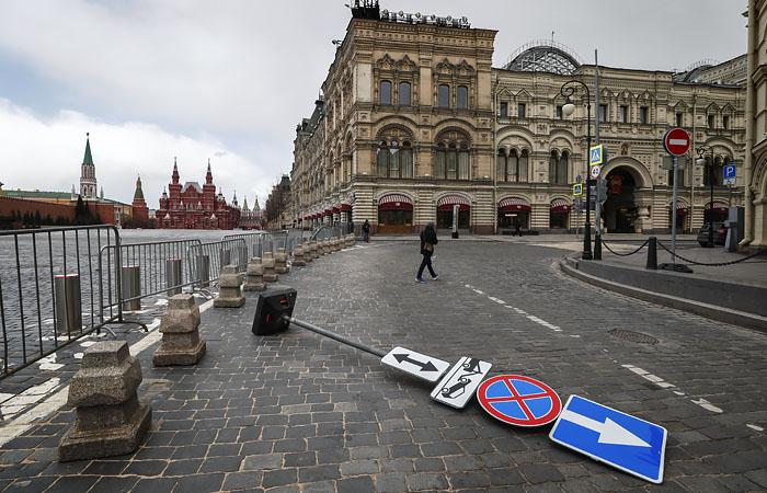 Сильный ветер повалил в Москве более 130 деревьев и повредил свыше 20 машин