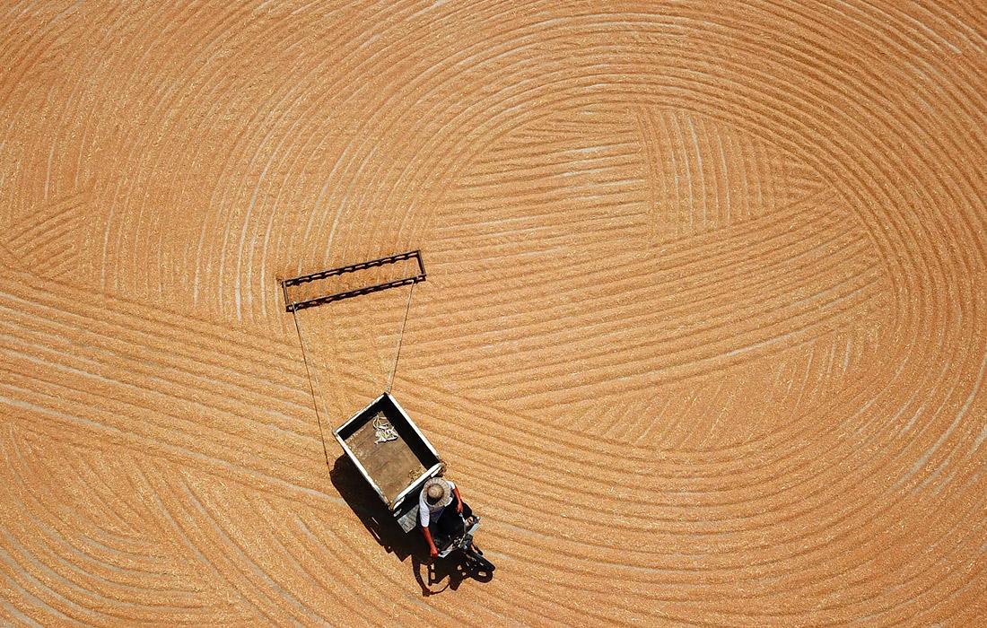 Фермер сушит пшеницу в деревне Цюйфан, провинция Цзянсу, Китай