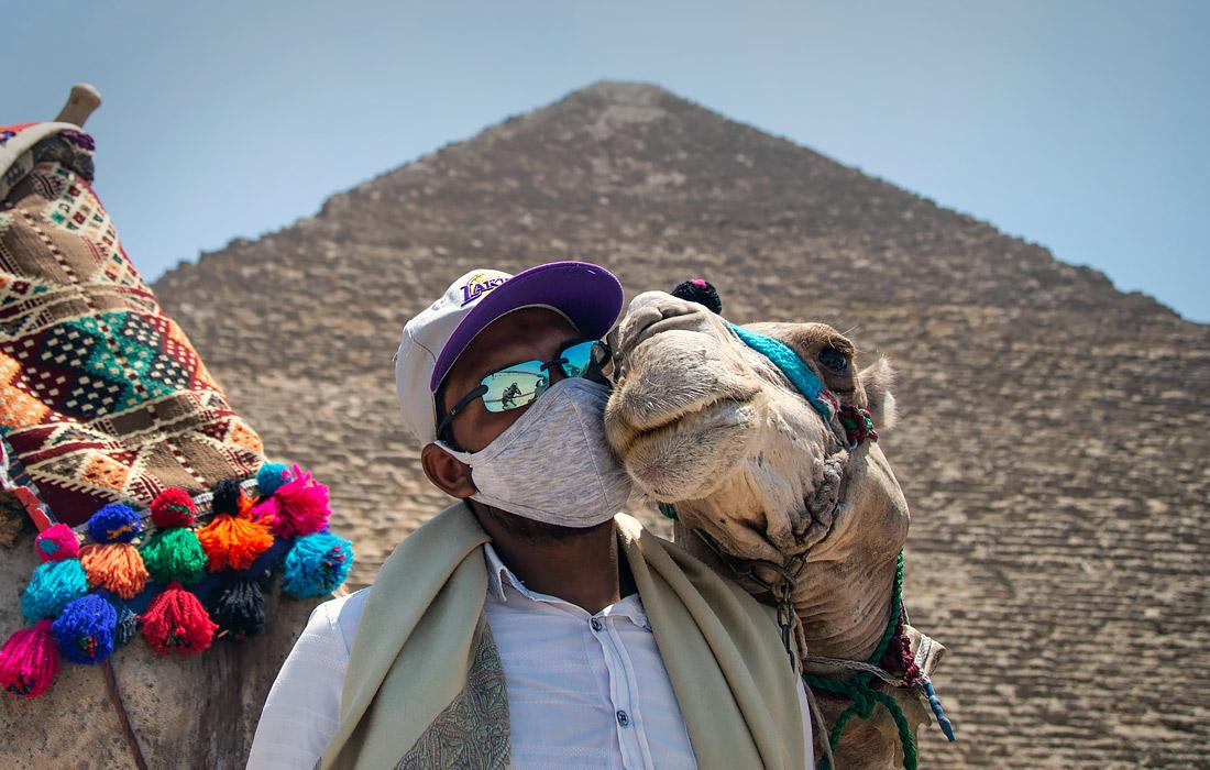 Египет возобновил международное авиасообщение и открыл основные туристические достопримечательности, в том числе комплекс пирамид в Гизе и Каирский музей на площади Тахрир. Первыми в страну прибыли туристы из Туниса, Кувейта, Франции и Иордании.