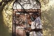 8 октября. В Непале зарегистрировали более 3,4 тысяч случаев заражения коронавирусом COVID-19 за последние сутки, это новый рекорд по числу заболевших за день. На фото: непальский священник у небольшого индуистского храма в  Бхактапуре.