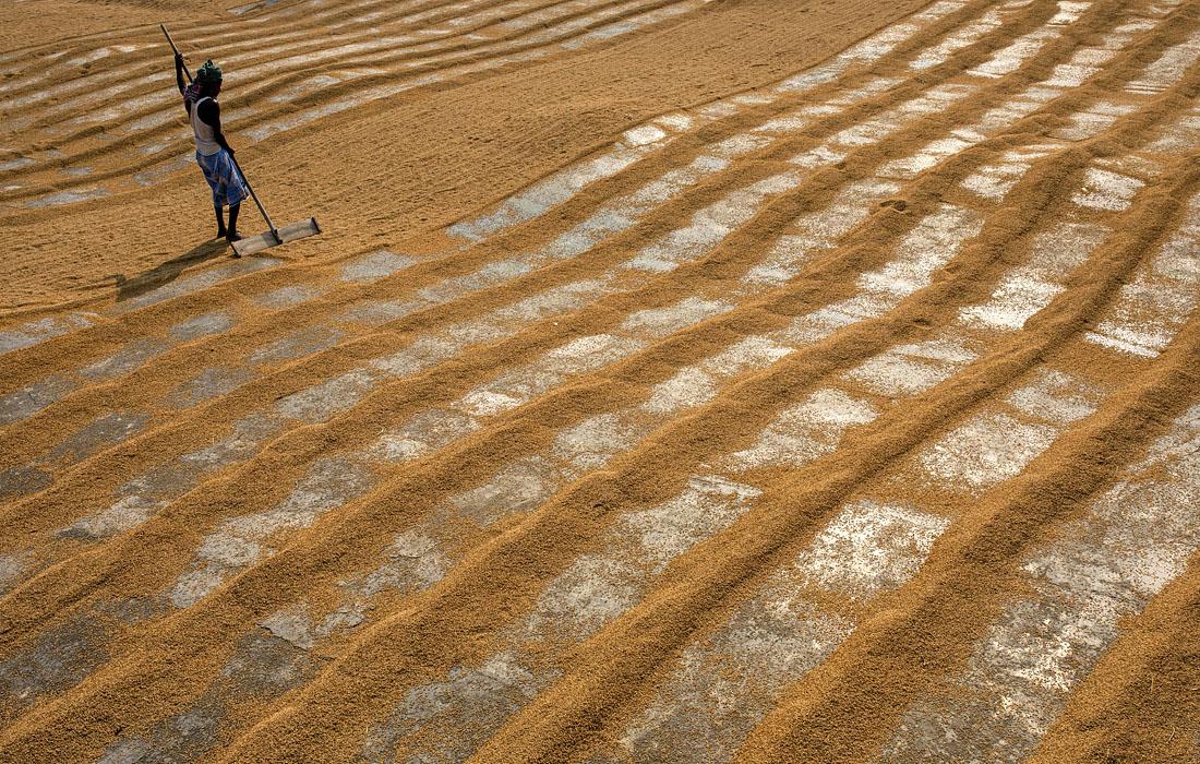 Завод по переработке риса в Нараянгандже, Бангладеш