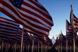 """""""Поле флагов"""" на Национальной аллее у Капитолия перед началом церемонии инаугурации"""